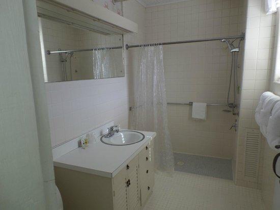 Gatlinburg Inn: Bathroom on double bed side... Maple Suite