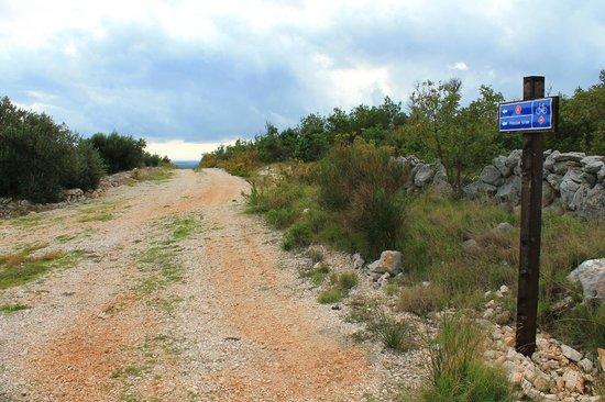 Residence Bepi Malugio: Spring paths