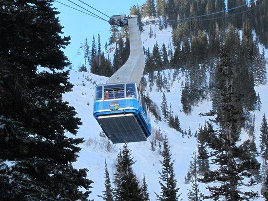 Snowbird Ski and Summer Resort: Not the way to the beginner area