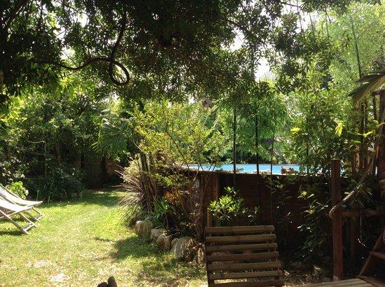 L'îlot Bambou : Le jardin