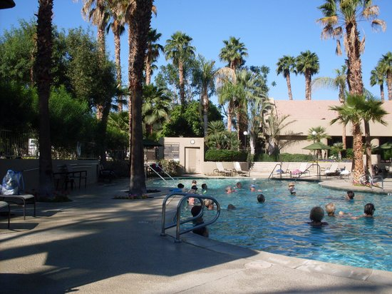 Emerald Desert RV Resort : The swimming pool