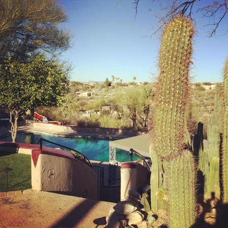 Hacienda Del Sol Guest Ranch Resort: The pool and view