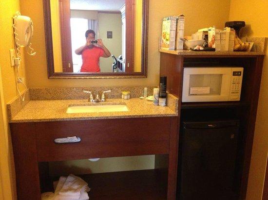 Rosen Inn International : part of bathroom