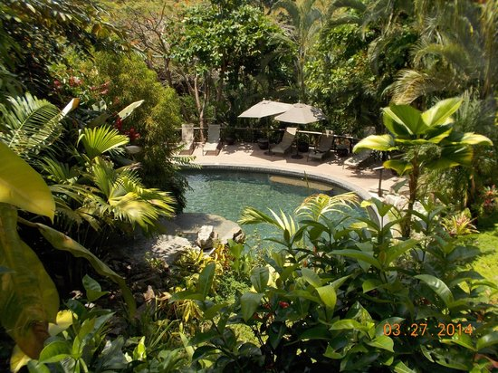 Tulemar's Buena Vista Luxury Villas: Villa pool-very nice
