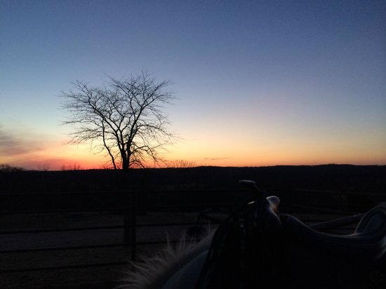 Bucks and Spurs Guest Ranch: Another Shadowdancer with sunset photo