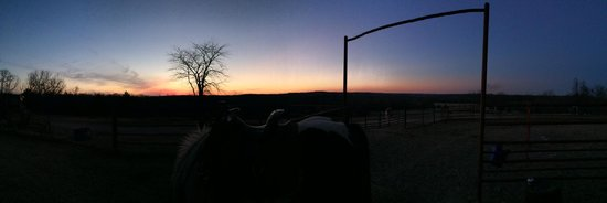 Bucks and Spurs Guest Ranch : Sunset with Shadowdancer