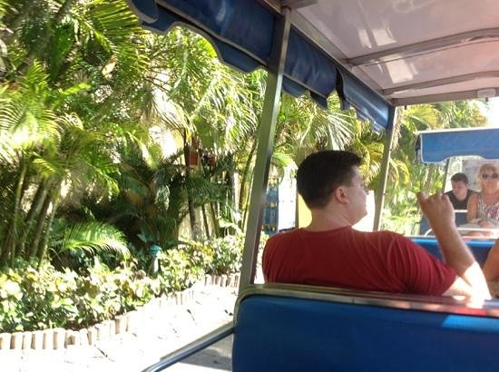 Grand Bahia Principe Punta Cana: trains that run in resort