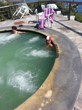 Hotel Giardino delle Ninfe e La Fenice : piscina