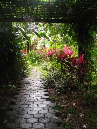 Hotel Chillies: Chillies Garden Pathway