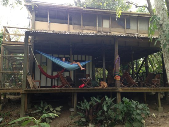Parrot Nest Lodge: Commons area with hammocks, chairs & tables, dining area.
