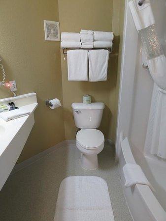 Rodeway Inn and Suites: バスルーム