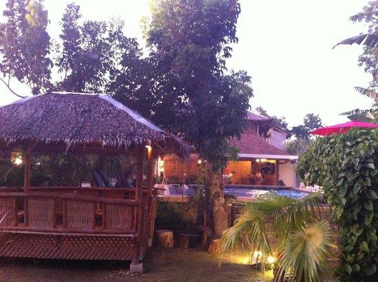 Palms Cove Bohol: 夕刻ライトアップされた中庭。この一帯でWi-Fi使用可能。