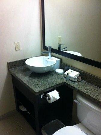 Sandman Hotel & Suites Winnipeg Airport: Bathroom