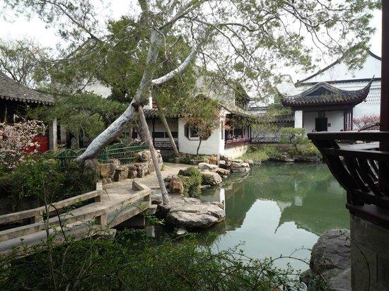 Master-of-Nets Garden : tranquillity