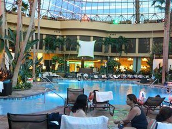 Harrah's Resort Atlantic City: The pool area was amazing, I loved it