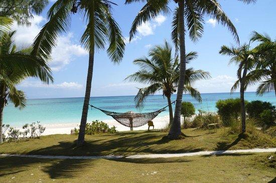 Greenwood Beach Resort: plage vue de la salle de restaurant