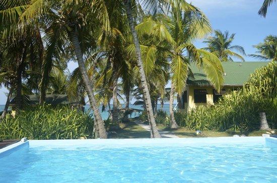 Greenwood Beach Resort: piscine