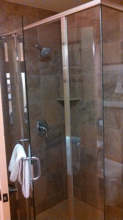 Best Western Premier The Lodge on Lake Detroit: Shower