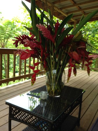 Roots Jungle Retreat : Beautiful bouquet in our balcony