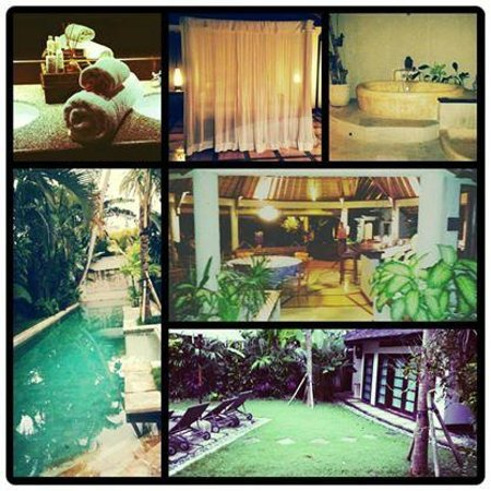 Taman Wana Ayurvedic Luxury Hotel and Villas in Seminyak: Villa Sumba