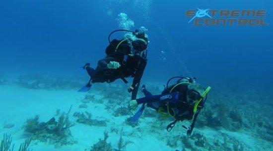 Extreme Control: diving a deux