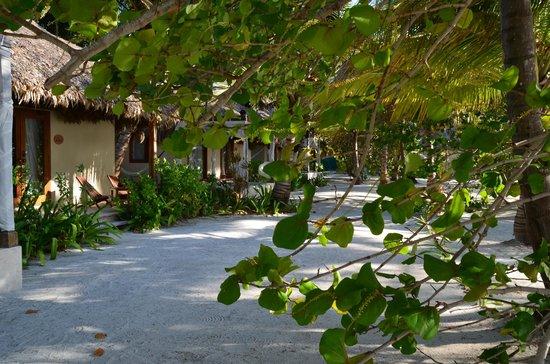 El Secreto: Sea Villa area