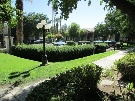 Four Points by Sheraton Bakersfield : pool area