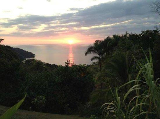 Tulemar Bungalows & Villas: view from the veranda