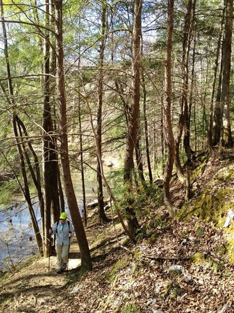 William Bankhead National Forest: We met several others as well on the trails.