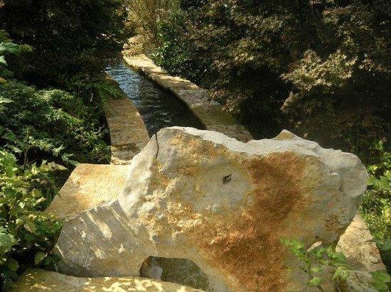 Arboretum et jardin botanique de Dallas : Stream