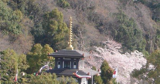 Sumadera: 桜のシーズン