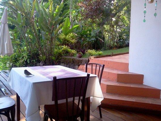 Pousada Tagomago Beach Lodge: aves que te acompañan en el desayuno
