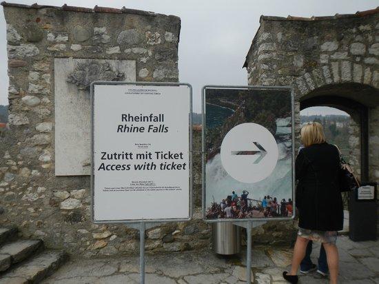 Rhine Falls : RheinFalls, Switzerland