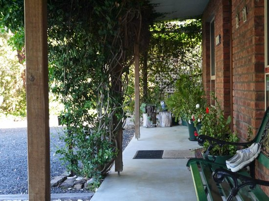 Pelican Bay B & B: Entry/Front Garden