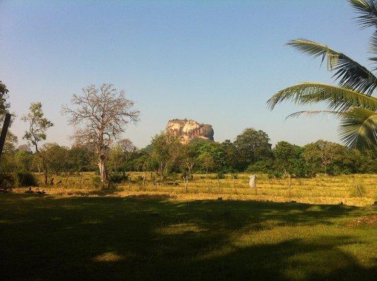 Paradise Inn: Sigiriya Rock