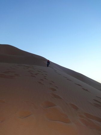 Sahara Garden: Walking to the top of the dune can be a challenge but is an experience worth having