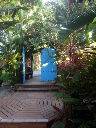 Tranquilseas Eco Lodge and Dive Center: Welcome !