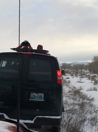Jackson Hole Eco Tour Adventures : Great viewing from the roof hatches on the 4WD