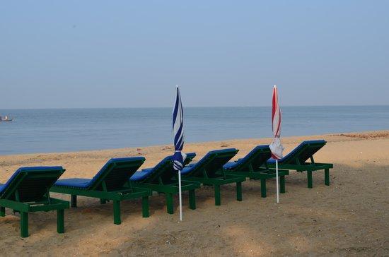 Cherai Beach Residency: The pristine beach