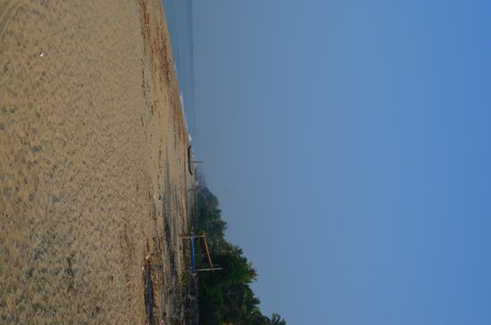 Cherai Beach Residency: Not a soul around