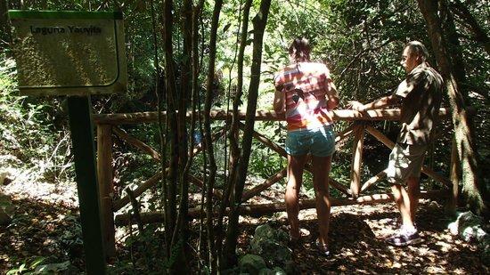 Parc écologique Indigenous Eyes : CON CRISTIAN, EL GUIA, VALE LA PENA CONTRATARLO PARA CONOCER MAS SOBRE ESTE HERMOSO LUGAR Y PAIS