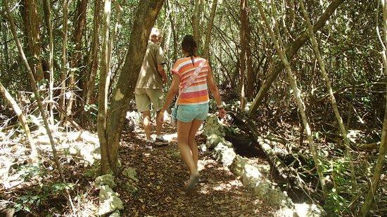 Parc écologique Indigenous Eyes : CAMINANDO POR EL BOSQUE CON CRISTIAN, NUESTRO GUIA