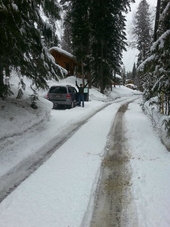 Hillside Lodge and Chalets: Main road up to the lodge