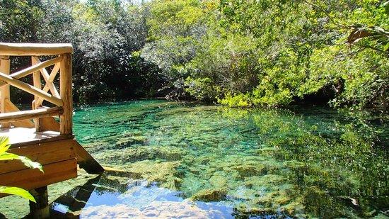Parc écologique Indigenous Eyes : AGUA TOTALMENTE PURA