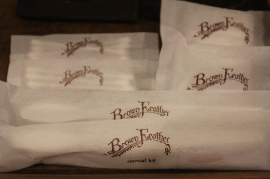 Brown Feather Hotel: Fantastic branding