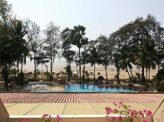 The Resort : A room with the perfect view!