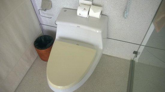 Paresa Resort Phuket: Yellow stained toilet seat