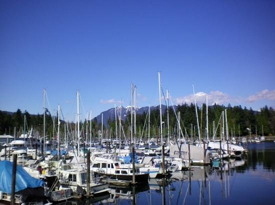 The Westin Bayshore, Vancouver: great view from the seawall