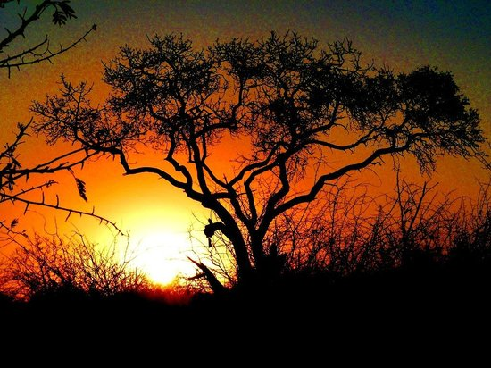 African Safari Guru Tours & Lodge Transfers : Yes, its Africa Sundowners time.