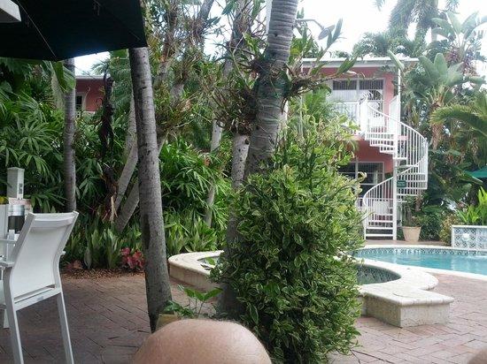 Hotel Lush Royale: Pool area